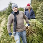 Is Mold In Your Christmas Tree Making You Sick?