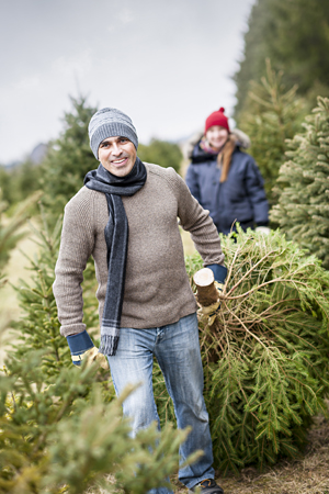 Is Mold In Your Christmas Tree Making You Sick?: One in Three people get sick from their Christmas tree. This article explains why and what you can do to feel better. Learn more.