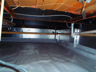 Atlanta Crawlspace Mold Removal, Mold Prevention, and Encapsulation Experts!