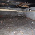 Why Does My Crawlspace Have Mold?