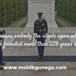 Mold B Gone Thanks Our Veterans!