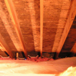 Top Four Causes Of Mold Growth In The Attic!: The purpose of this article is to explain and list the top four reasons why mold grows in your attic and what you can do to prevent mold growth.