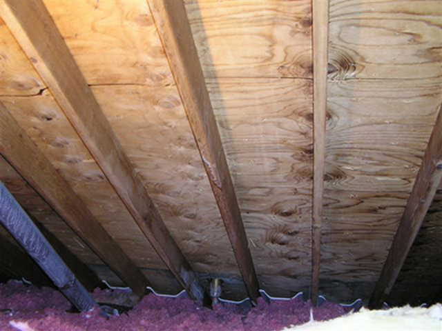Why Does Mold Grow In My Attic?