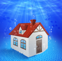 What Are The Top 3 Water Damage Hazards?: Flood and water damage not only disrupts your life but can also be hazardous to your health! This article explains the top 3 hazards and prevention measures!