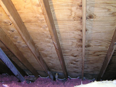 Top 4 Reasons Mold Grows In Your Attic!