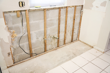 Mold Removal (3 Articles)