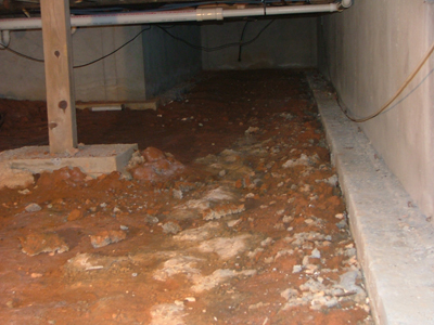 Top 5 Reasons Your Crawl Space Needs A Vapor Barrier