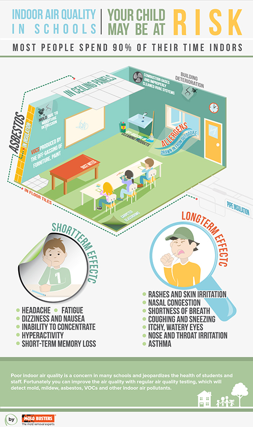 Mold In Schools Infographic