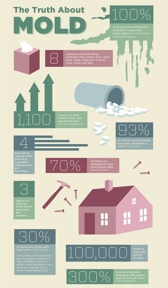 Mold Facts and Information Summary