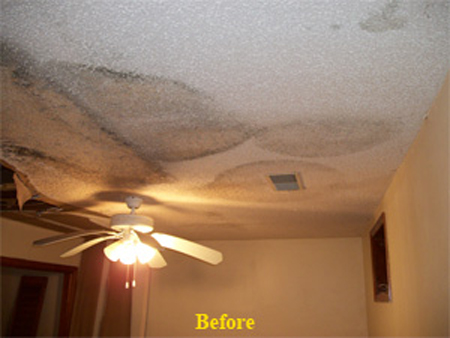 Atlanta Georgia Mold Removal Professionals