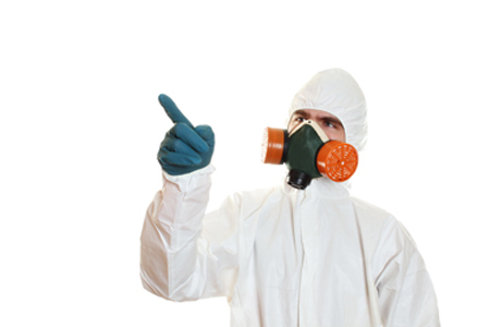 Mold Remediation Process