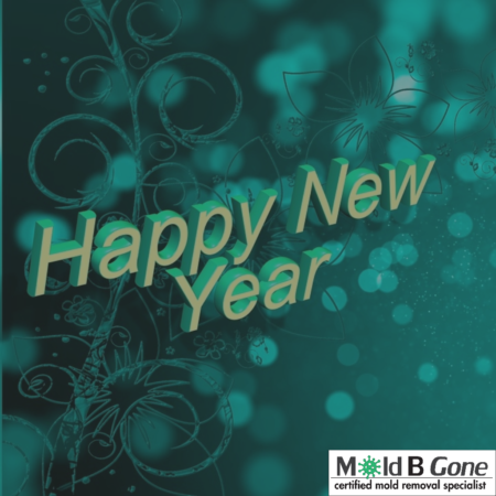Mold B Gone Wishes You A Happy New Year!