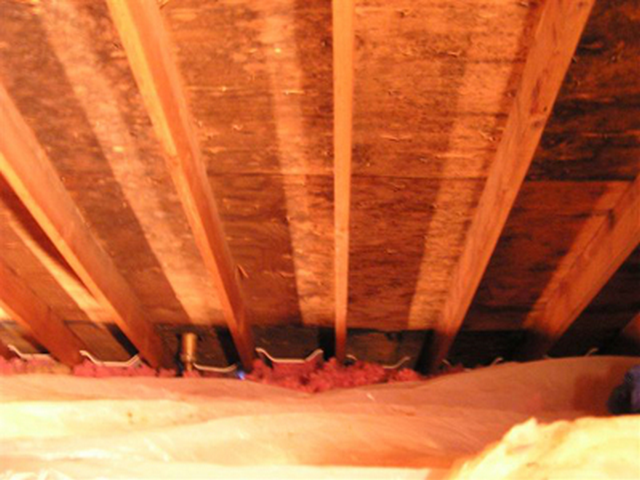 Top Four Causes Of Mold Growth In The Attic!