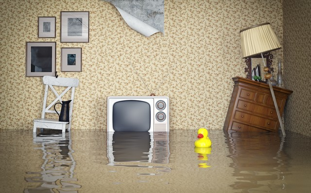 Top 9 Reasons To Get Your Home Or Business Dried Professionally After Water Damage?