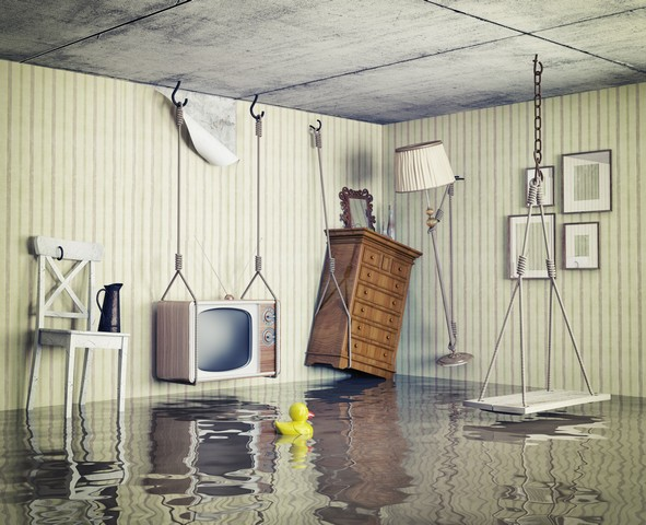 Why Should I Get My Home Or Business Dried Professionally After Water Damage?